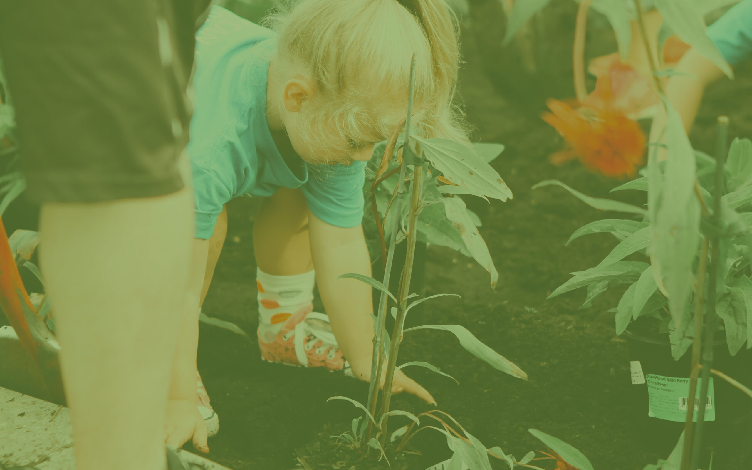 girl planting in garden for blog banner